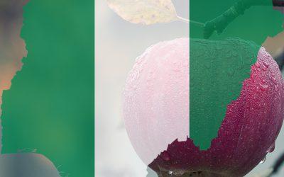 NIGERIAN REAL ESTATE – A LOW HANGING FRUIT.